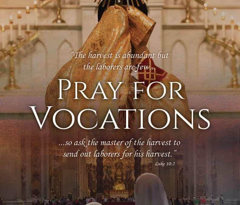 Pray for Vocations Poster (bilingual)